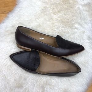 Everlane Pointed Flats